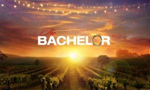 bachelor copy